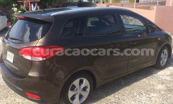 Buy Used Kia Carens Black Car in Willemstad in Curacao