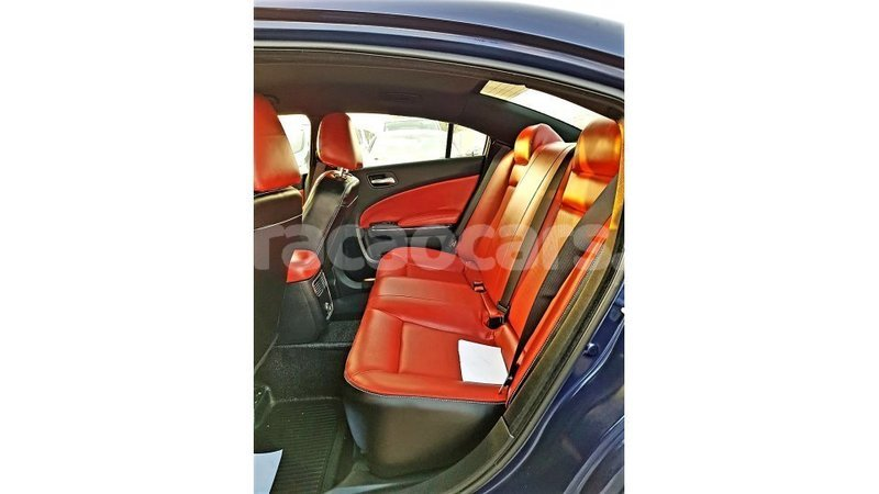 Big with watermark dodge charger curacao import dubai 3491