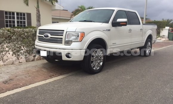Buy Used Ford F–150 White Car in Willemstad in Curacao