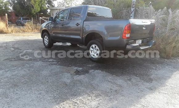 Buy Used Toyota Hilux Silver Car in Willemstad in Curacao