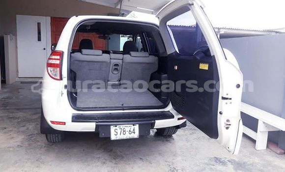 Buy Used Toyota RAV4 White Car in Willemstad in Curacao